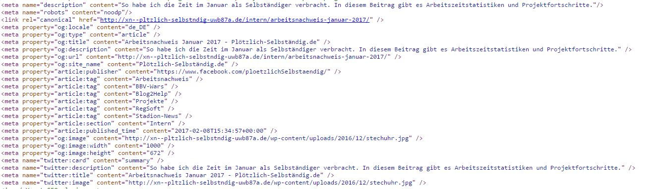 Auszug der Metadaten aus einem Plötzlich-Selbständig.de Artikel