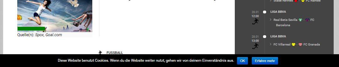 Die Warnung dass die Seite Cookies verwendet am Beispiel von Stadion-News.de