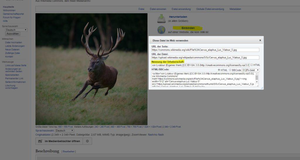 Auf der linken Seite das Bild eines rennenden Hirschen auf der rechten Seite die Box zur Nennung der Urheberschaft von Wikimedia Commons