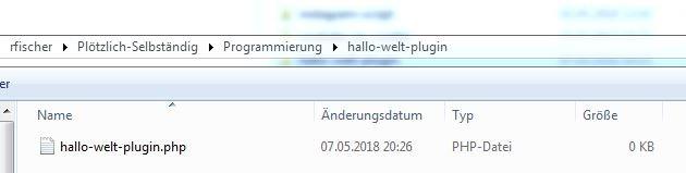 Die hallo-welt-plugin.php im Dateiexplorer